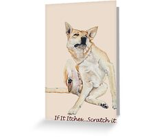 Cute funny dog scratching art with humorous slogan Greeting Card