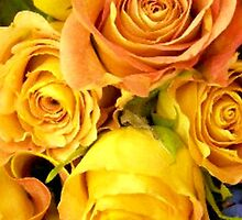 Roses of Love by Elenne Boothe
