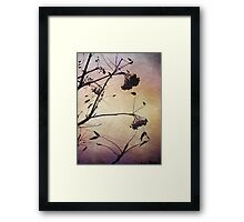 I love the purple sky Framed Print