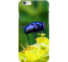 Bluebottle iPhone Case/Skin