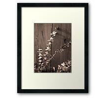 6_36 Framed Print