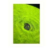 my world in green Art Print