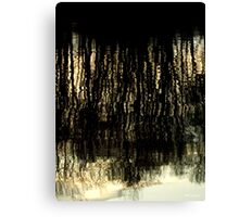Sunset Tree Reflections Abstract Light Patterns Canvas Print