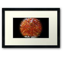 WeatherDon2.com Art 132 Framed Print