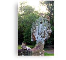 Monkeys on the Snake Statue - Angkor, Cambodia. Canvas Print