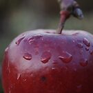 Red Apple Macro by Colin Bentham
