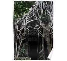 Ta Prohm Temple Door - Angkor, Cambodia. Poster