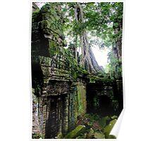 Ta Prohm Temple IX - Angkor, Cambodia. Poster