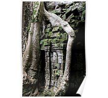 Ta Prohm Temple X - Angkor, Cambodia. Poster