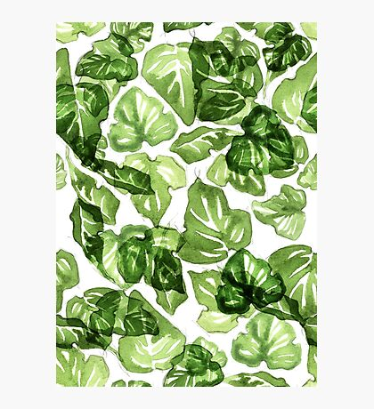 Green leafs pattern Photographic Print