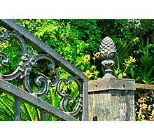 Old Iron Gate Photographic Print