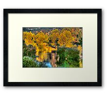 Trees around the lake Framed Print