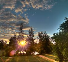 sunset through the trees by BigAndRed
