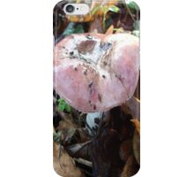 Fungus iPhone Cover iPhone Case/Skin