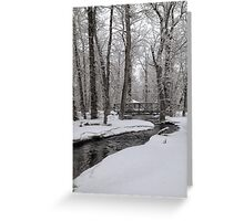 Winter In the Bear Paws Greeting Card