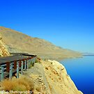This Beautiful World we live in! Walker lake in Nevada by Donna Anglin Husband