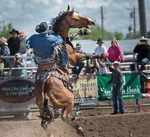 Bucking Horse Sell by pdsfotoart