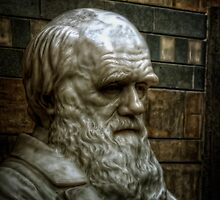 Charles Darwin close up at the Natural History Museum by Alan E Taylor