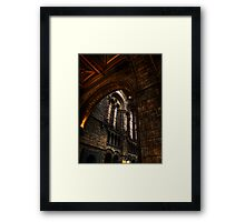 NHM Arches within Arches Framed Print
