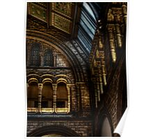 NHM Pillars and Arches Poster