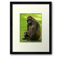 Cheese !!! Framed Print