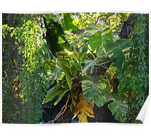 Flora at the River Cuale - Flora al lado del Rio Cuale Poster