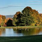 Vermont Pond In October by Yuri Lev