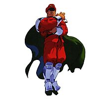 M. Bison Photographic Print