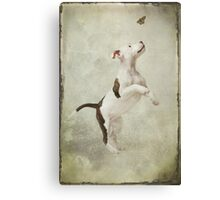 Molly and the Butterfly Canvas Print