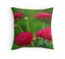 Crested Merlot Throw Pillow