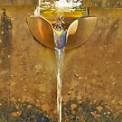 Golden Fountain by kalaryder