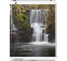 Penllergare Nature Reserve iPad Case/Skin