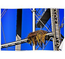 Bird Nest on Water Tower Poster