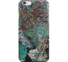 Maya of the Mountain iPhone Case/Skin