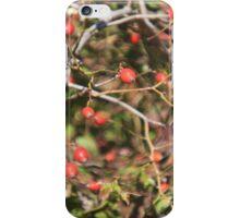 Berries thru fish eye iPhone Case/Skin