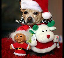 Christmas Chihuahua & Friends by AngieBanta