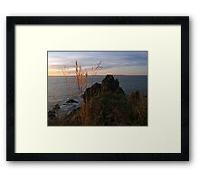 Catching the Breeze Framed Print