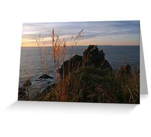 Catching the Breeze Greeting Card