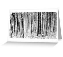 9.12.2011: In the Freezing Forest I Greeting Card