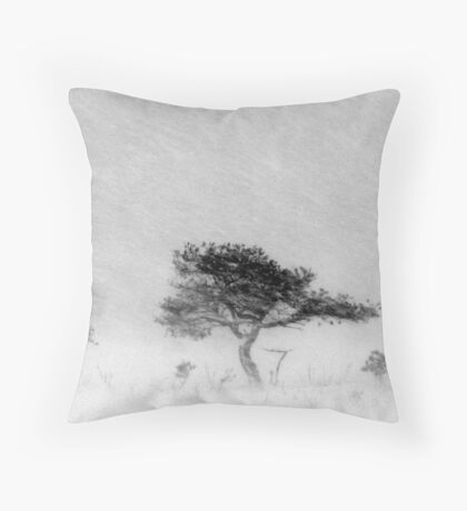 9.12.2011: Alone in the Blizzard II Throw Pillow
