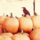 October days by beverlylefevre