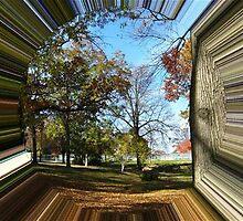 WeatherDon2.com Art 152 by dge357