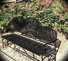 WeatherDon2.com Art 160 by dge357