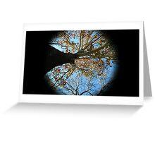 WeatherDon2.com Art 166 Greeting Card