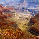 Grand Canyon National Park, Arizona, USA by Jennifer Bailey