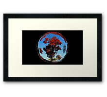 WeatherDon2.com Art 201 Framed Print