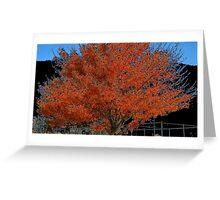 WeatherDon2.com Art 209 Greeting Card