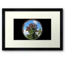 WeatherDon2.com Art  215 Framed Print