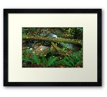 The Ravine Framed Print