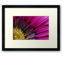 Pink Kiss Framed Print